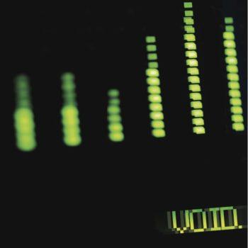 VOID Album Cover